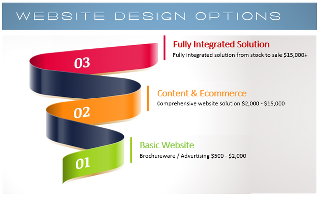 Website design options