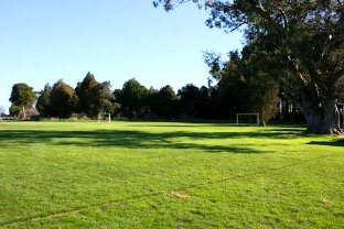 Winton Football Club Feasibility Study